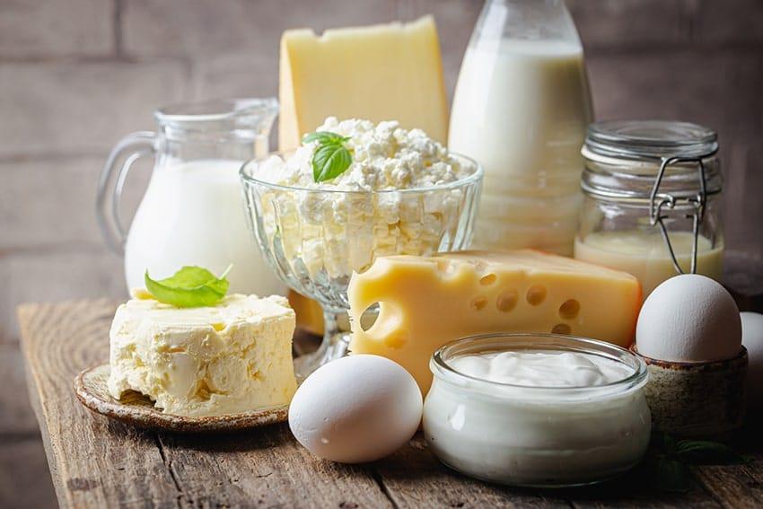 different food rich in calcium